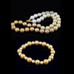 繁诺贝宝珠(金色)渐变款项链 货号113798