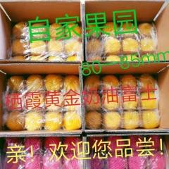 【峻农果品】烟台栖霞黄金奶油富士苹果80--85mm优质果净重10斤包售后包邮