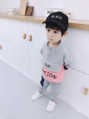 男女宝宝秋季新款童套装 1-4岁拉链卫衣套装 ins运动卫衣套装