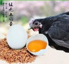 边走边淘 皖北散养绿壳鸡蛋 30枚 包邮