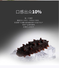 鑫玉龙单冻即食海参8-10