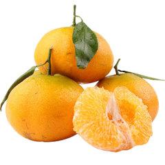 【新鲜水果】四川 耙耙柑 5斤中果 约16粒以内 热卖网红水果