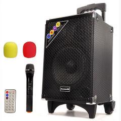 纽曼 拉杆音箱广场舞音响户外便携式插卡大功率扩音器 手提移动低音炮音箱带无线麦克风