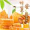 正宗蜂巢蜜蜂窝蜜纯正天然蜂巢蜜嚼着吃420g土蜂蜜峰蜜巢