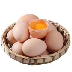 正宗散养土鸡蛋30枚装  山地谷饲散养土鸡蛋