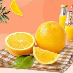 【进口水果】进口澳橙一级88# 5斤 (单果200-210g)
